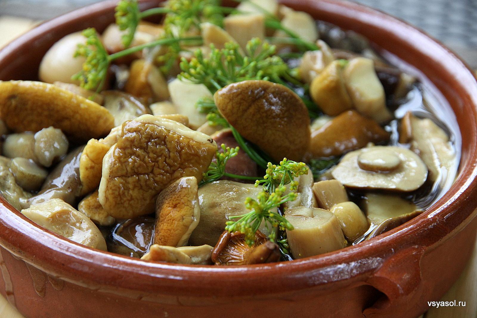 Белые грибы в сметане рецепт с фото