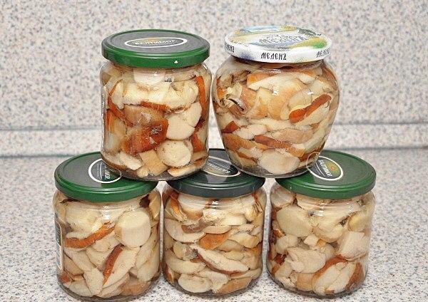 Консервировать белые грибы рецепты